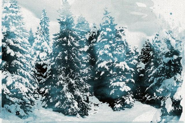 Doppelseite Ruhe Wissen an Weihnachten Illustrationen: Stefan Dimitrov