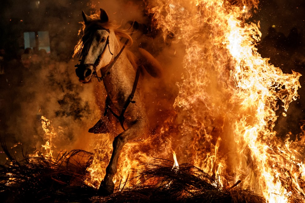 A man rides a horse through flames during the annual 'Luminarias' celebration on the eve of Saint Anthony's day, Spain's patron saint of animals, in the village of San Bartolome de Pinares, northwest of Madrid