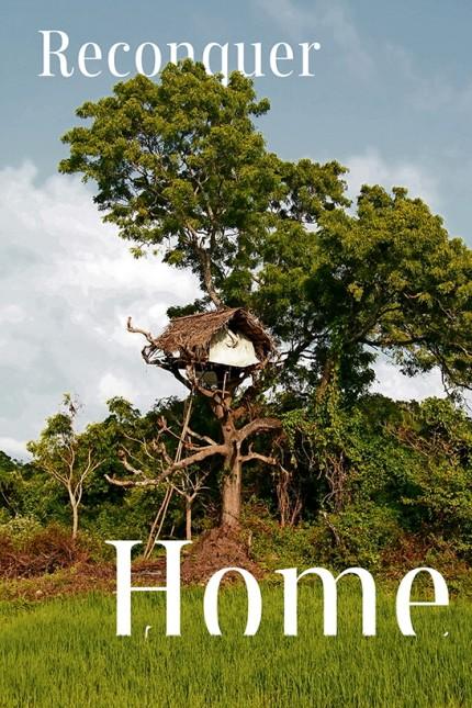 Reisfeld und Baumhütte