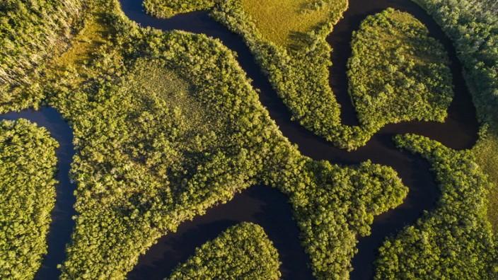 Amazonas Brasilien