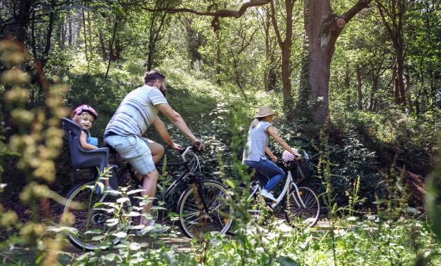 Family riding bicycle in a forest model released Symbolfoto PUBLICATIONxINxGERxSUIxAUTxHUNxONLY DAPF