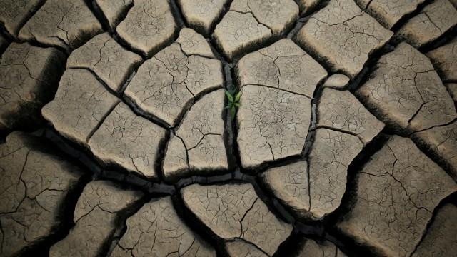 The Wider Image: Cape Town dreads 'Day Zero' when taps will run dry