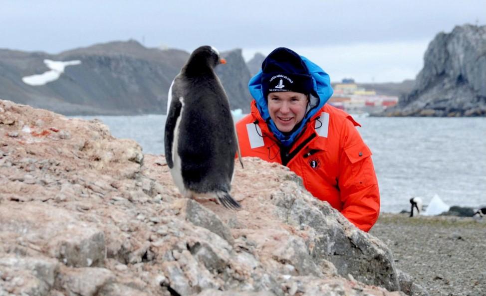 Fürst Albert beobachtet Pinguin in der chilenischen Antarktis
