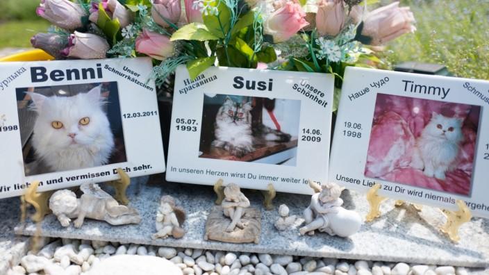 München heute: Auf dem Tierfriedhof von Wolfgang Müller gibt es Gräber für Haustiere.