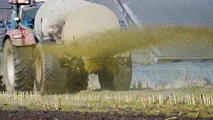 Ein Traktor versprüht Gülle in Schleswig-Holstein