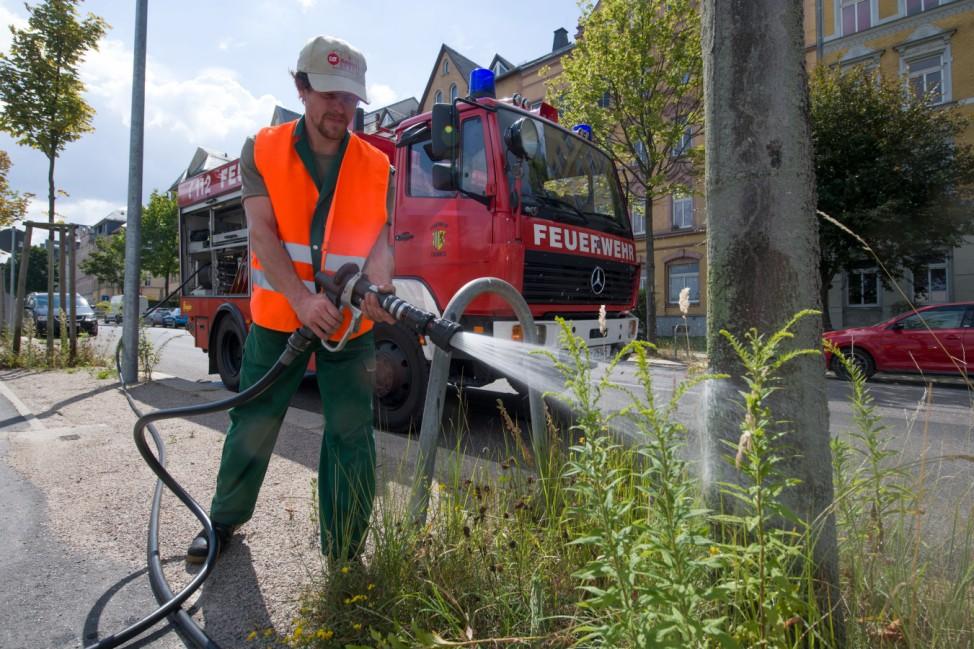 Feuerwehr hilft beim Bewässern der Bäume