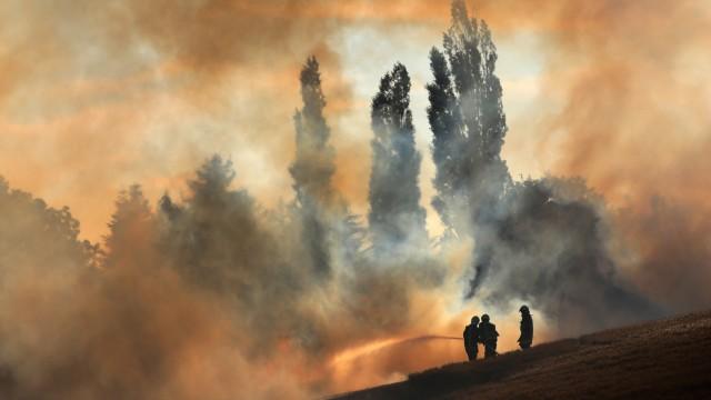 Brandgefahr im Norden: Ein Feld in Mecklenburg-Vorpommern steht in Flammen