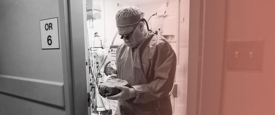 Ein Chirurg trägt ein Spenderorgan
