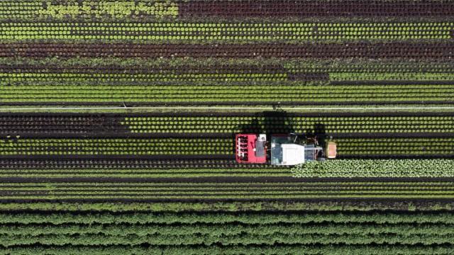 Landwirtschaftsprojekt in der Schweiz