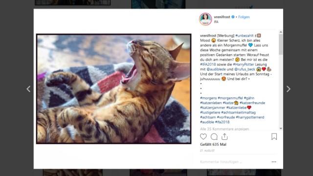 Ein Foto von Vreni Frosts Katze auf ihrem Instagram-Account: