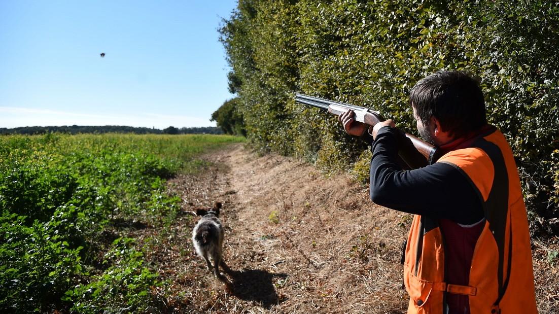 Frankreich: Die Macht der Jäger - Panorama - SZ.de