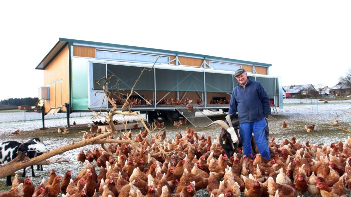 Mobiler Hühnerstall ist Stein des Anstoßes; Rudolf Hewidrich und seine Hühner