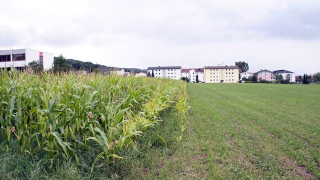 Bauplatz für das neue Gymnasium