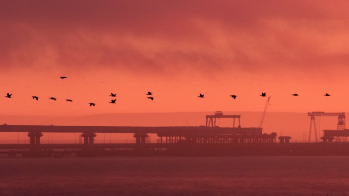 Birds fly past a road-and-rail bridge, which is constructed to connect the Russian mainland with the Crimean peninsula, at sunrise in the Kerch Strait, Crimea