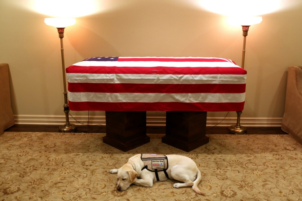 Sully the service dog of former U.S. President George H.W. Bush in his final months lays in front of Bush's casket at the funeral home in Houston