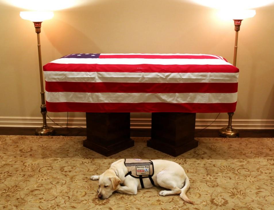 Bushs Hund ruht vor Sarg