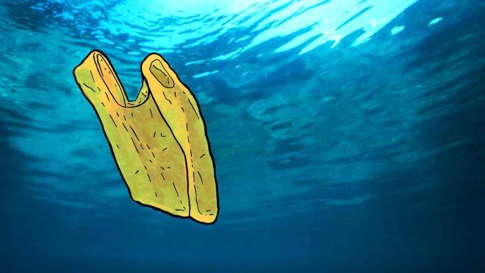 Öko-Ratgeber zu Bioplastik: undefined
