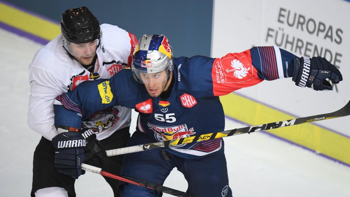 champions hockey league wie im training sport in der region