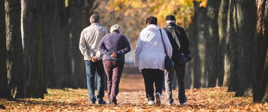 Spaziergänger in Allee