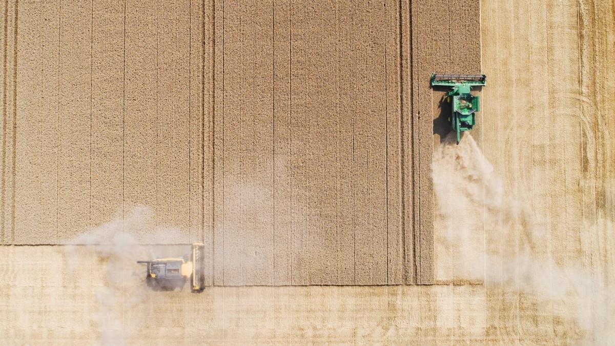 Agrar-Atlas - Naturschützer fordern radikale Reform