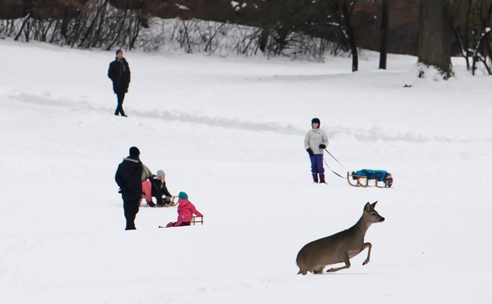 Winter in Bayern - München