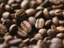 Nachhaltigkeit: Klimakiller Kaffee
