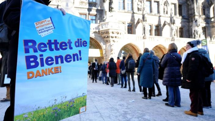 """Volksbegehren """"Rettet die Bienen"""" - Menschen in München stehen Schlange für ihre Unterschrift"""
