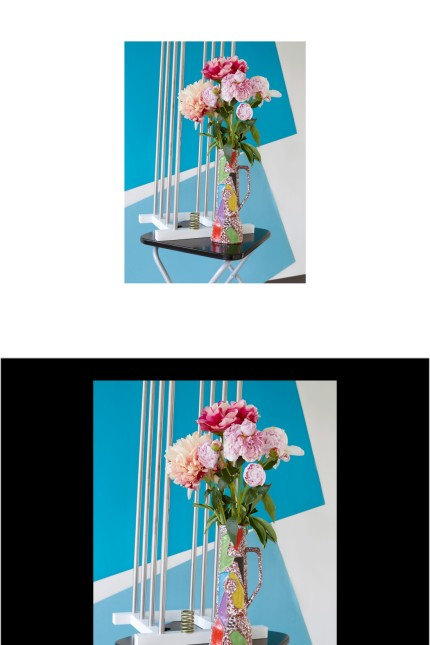Annette Kelm. Tomato Target 14/12 2018 24/3 2019 Annette Kelm, Still Life with Spring, 2017, Courtesy Annette Kelm, König Galerie, Berlin, Andrew Kreps, Gallery, New York und Gió Marconi, Mailand