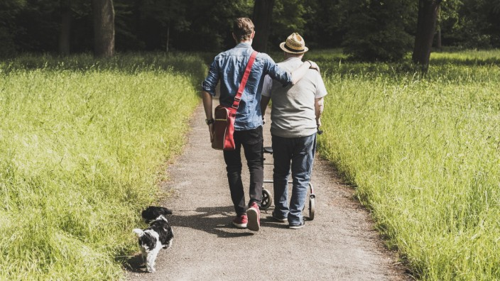 Back view of grandfather walking with grandson and dog in nature model released Symbolfoto property