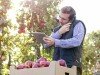 Male farmer talking on cell phone Male farmer with digital tablet talking on cell phone in sunny app