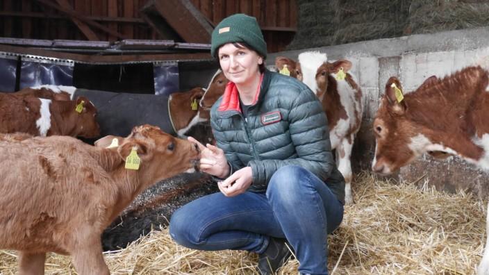 Bio-Landwirtschaft: Auf dem Bauernhof von Stephanie Strotdrees fressen die Rinder selbstangebautes Futter. Auch die Kälber dürfen natürlich aufwachsen.