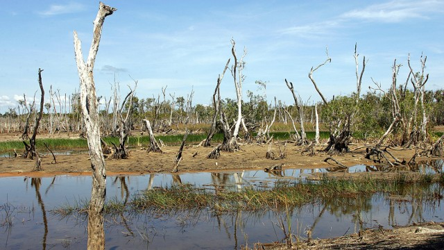 AUSTRALIA-DROUGHT-GAYNGARU WETLANDS