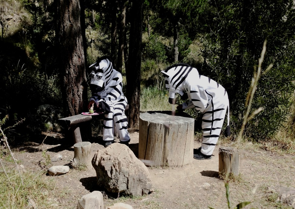 Members of the Vial Education Program dressed in zebra costumes are seen at the Auquisamana park in La Paz