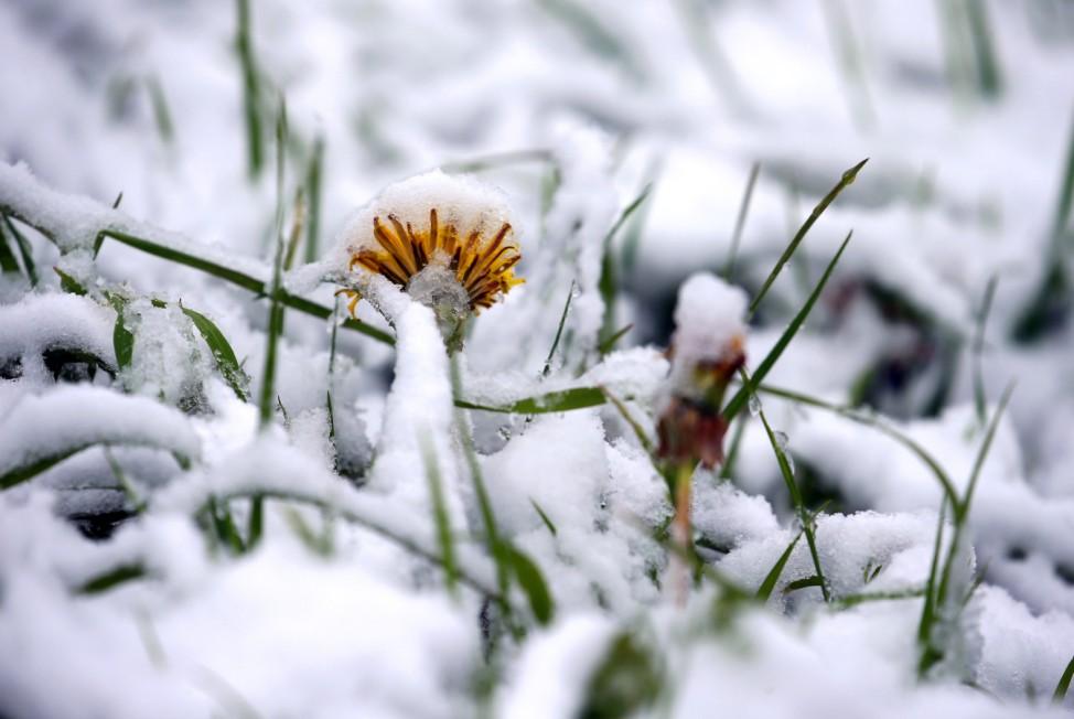 Schnee im Süden