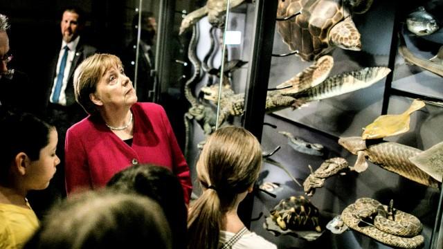 Merkel Visits Natural History Museum