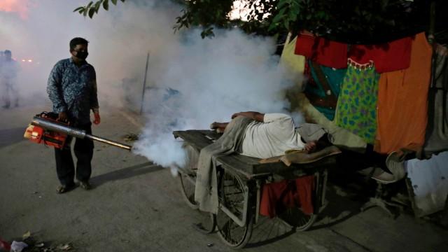 WHO: Malaria in Algerien und Argentinien besiegt