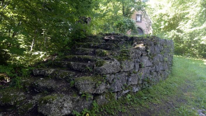Naturschutz: Mit dem Stück Wald hat die Gemeinde Pullach auch den alten Höllriegel-Park erworben und will ihn nun attraktiver machen für Besucher.