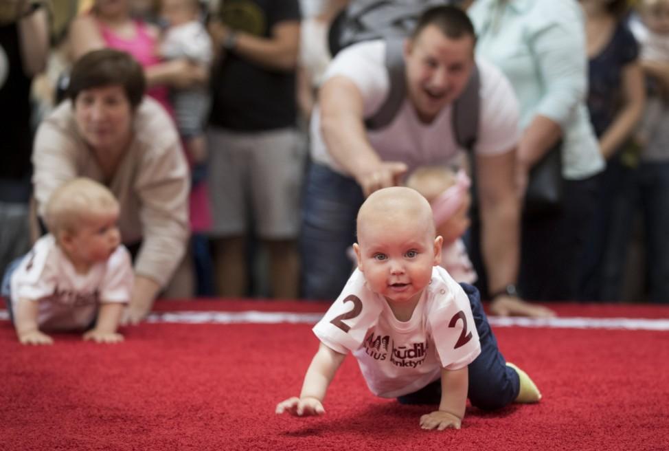 Babys krabbeln in Vilnius in Litauen um die Wette.