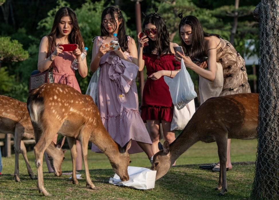 *** BESTPIX *** Nara's Wild Deer