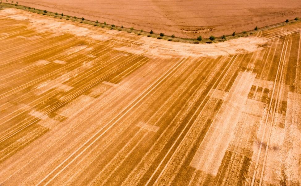Spuren auf abgeernteten Feldern