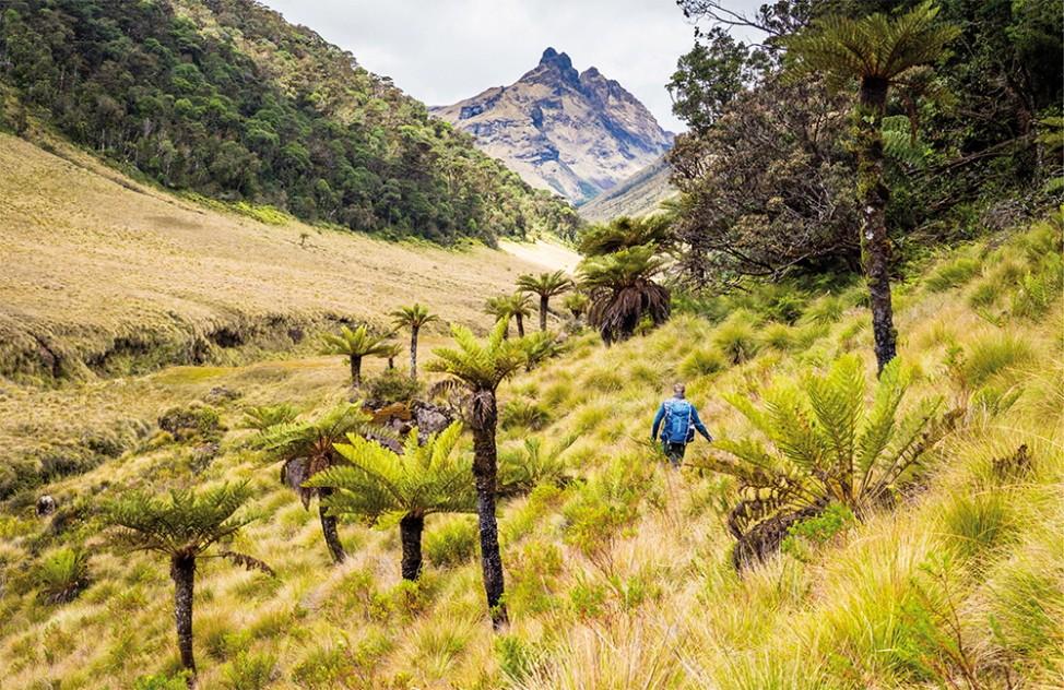 Mount Giluwe Papua-Neuguinea Vulkan