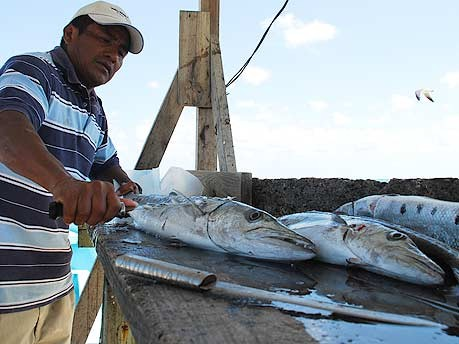 Caye Caulker in Belize Karibik, zweitgrößtes Barriereriff der Welt, Foto Marcel Burkhardt