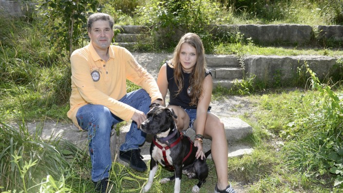 """Kampfhunde: Claus Reichinger und Louisa Grießmeyer mit dem American Staffordshire Terrier """"Kira"""", einem von derzeit zehn Listenhunden im Tierheim."""