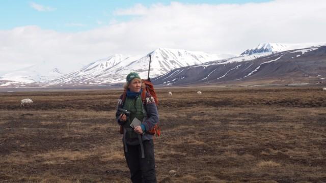 Folgen der Klimakrise: Die Ökologin Åshild Ønvik Pedersen hat viele tote Tiere gefunden.