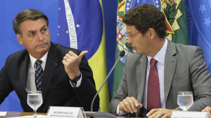 Brasilien: Streit um Zahlen zur Regenwald-Rodung