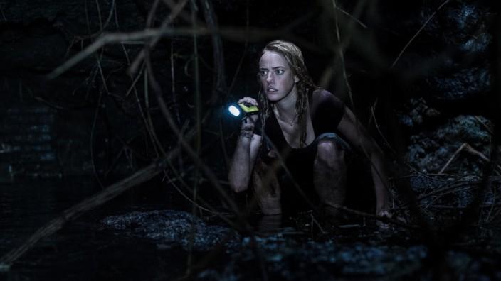 """Bild zum aktuellen Horrorfilm """"Crawl"""""""