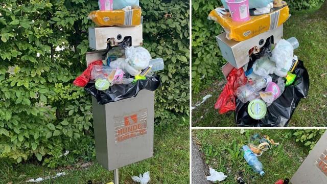 Müll am Walchensee