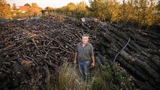 German Climate Plaintiffs Drei Familien in Deutschland reichen Klimaklage ein