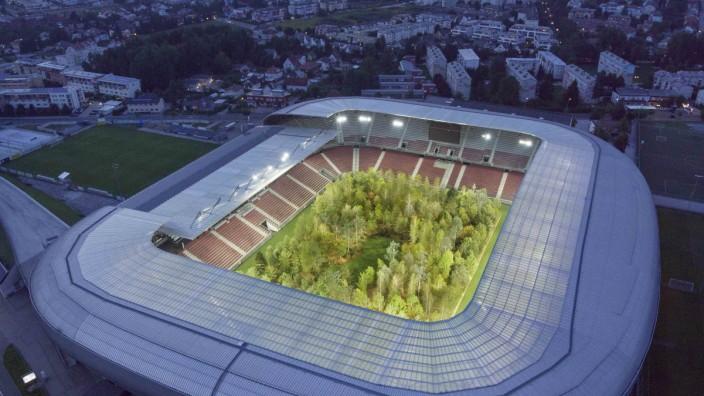 Waldinstallation im Fußballstadion Klagenfurt