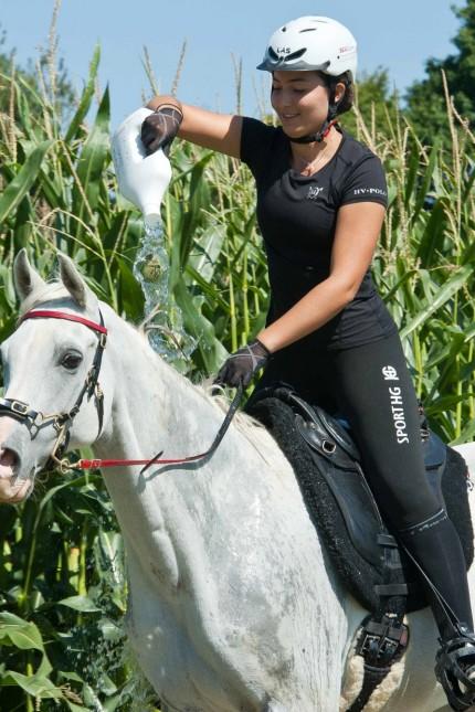 Der Sport im Ort: Abkühlung to go: Um Zeit zu sparen werden den Reitern unterwegs Wasserflaschen für ihre Tiere gereicht.